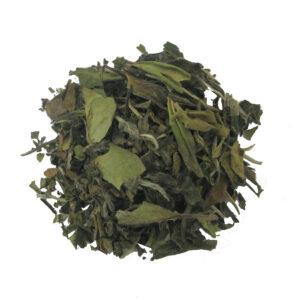 Losse biologische witte thee Pai Mu Tan